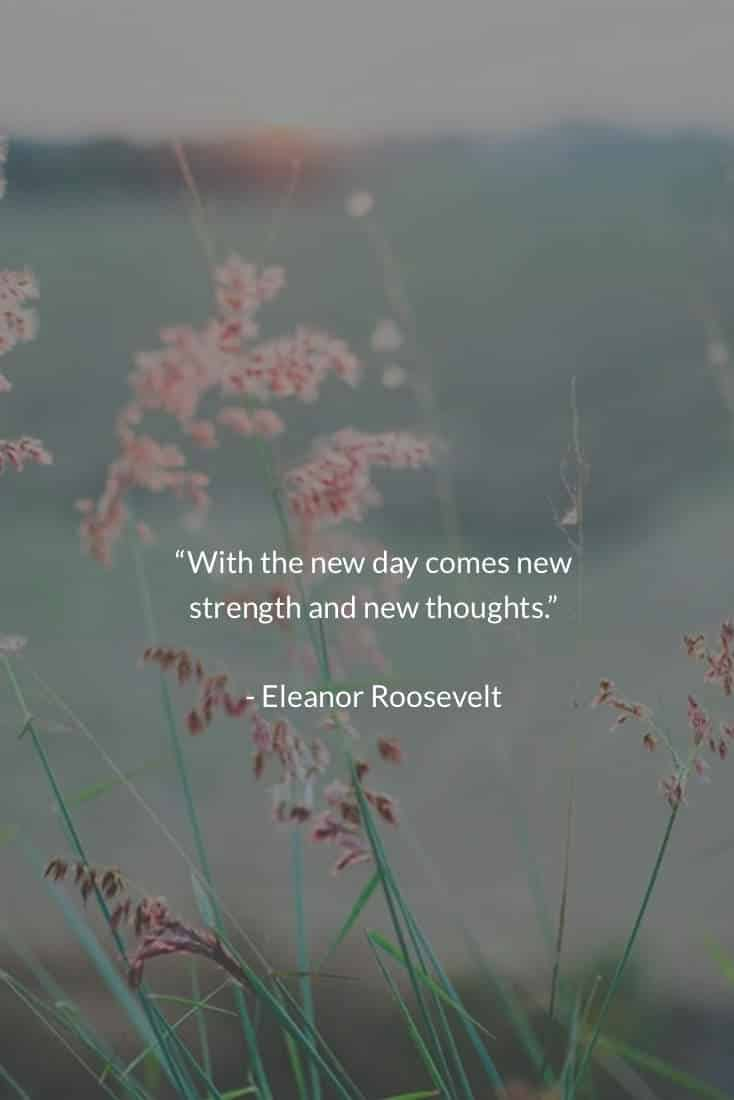 The New Day | Covetboard Quotes