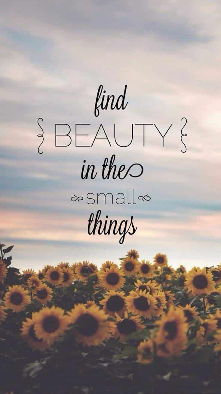 Small Things | Covetboard Quotes