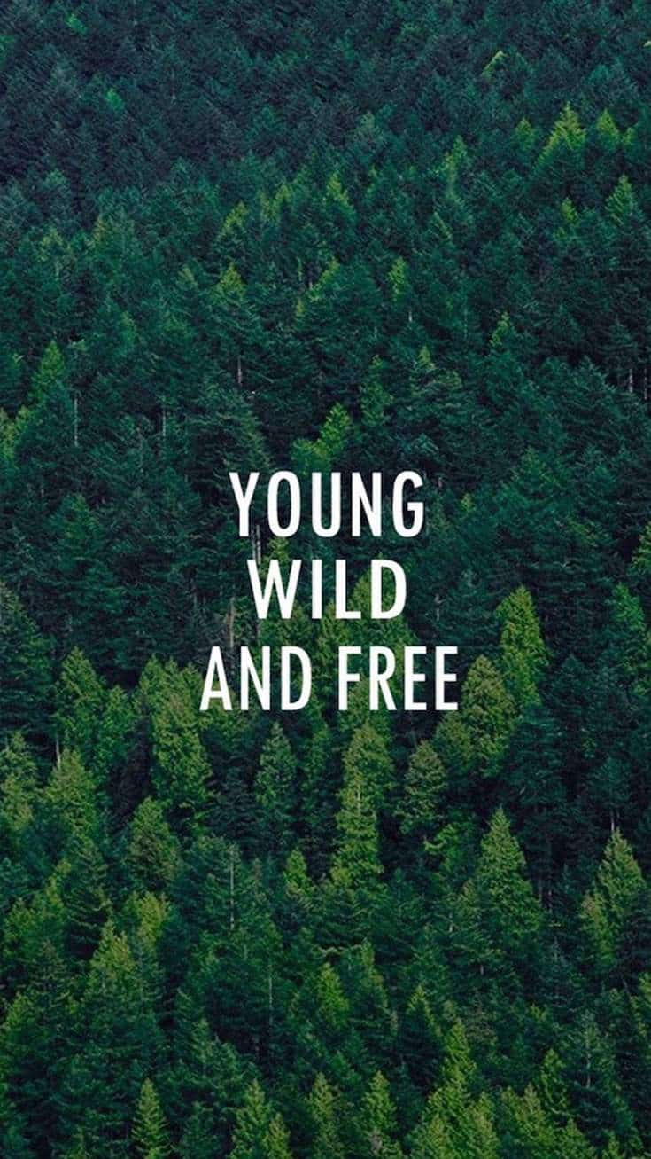 Young, Wild and Free | Covetboard Quotes
